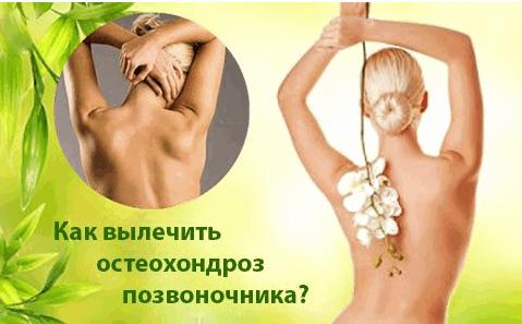 Александра Бонина Лучшие отзывы