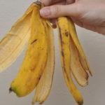 Банановая кожура для комнатных растений сотворит чудо